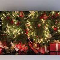 backdrops for photography cheap decore