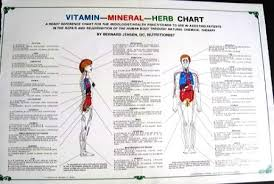 herb chart mineral herb chart 11 x 17 laminated