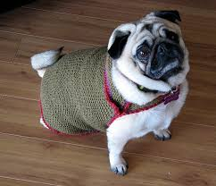 178 best dog sweaters to knit u0026 crochet patterns images on