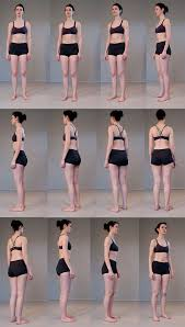 Female Anatomy Reference Top 25 Best Anatomy Reference Ideas On Pinterest Body Reference