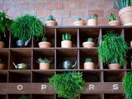 how to create an easy diy plant shelf we used vintage shelves
