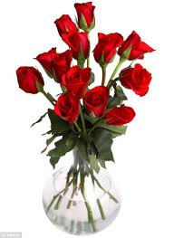 cheap roses now that s cheap why the most expensive roses may not be the best