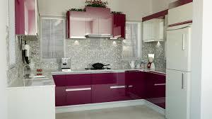 Design Of Modular Kitchen Cabinets Kitchen Modular Kitchen Designs Design Delhi Of Small Price In