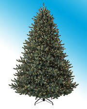 unlit balsam hill classic blue spruce artificial tree 6