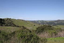 tilden regional park wikipedia