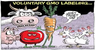 known facts about gmo and why they matter