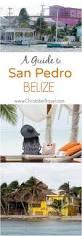 best 25 belize diving ideas on pinterest belize snorkeling