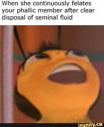 Daily Meme - daily meme 1 normie memes amino