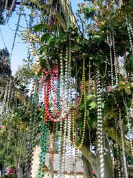 mardi gras trees living rootless lafayette the mardi gras tree