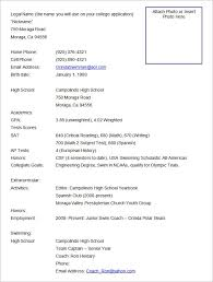 Example Format Of Resume by Download Format Of Resume Haadyaooverbayresort Com