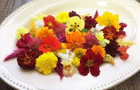 Fall Flowers Flower Premium Fall Flowers Mix