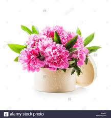 The Pink Peonies by Peony Flowers Romantic Bouquet Of Pink Peonies In Gift Box