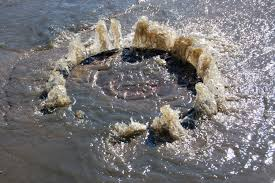 main sewer clog symptoms causes and solutions