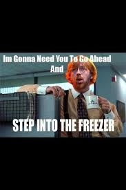Phish Memes - 32 best phish images on pinterest phan cosmic and phish posters