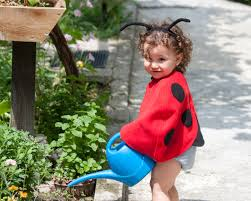 toddler halloween costume ladybug costume red cape