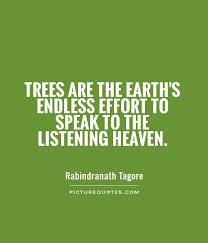 trees are the earth s endless effort to speak to the listening