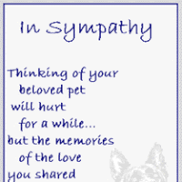 pet condolences sympathy pet animated gifs photobucket