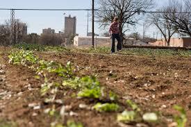 Texas Vegetable Garden Calendar by Waco Planting Calendar Urban Gardening Coalition