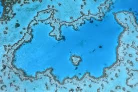 Great Barrier Reef Map Great Barrier Reef Gets A Little Good News Science Smithsonian