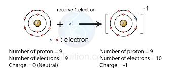 fluorine atom diagram diagram gallery wiring diagram