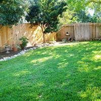 exterior captivating garden exterior design with good trees for