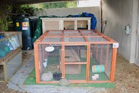 Homemade Rabbit Cage Going To Build Ideas Build Wooden Rabbit Hutch