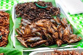 insectes dans la cuisine cuisine thaïlandaise au marché fried insectes sauterelle pour la