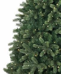 noble fir christmas tree classic noble fir snap tree tree classics