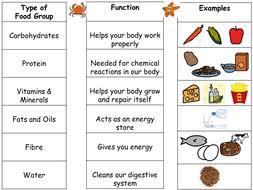 741063161753 chemistry math review worksheet pdf 5th grade