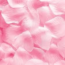 flower petals 1000pcs light pink silk flower petals wedding