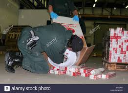a german customs officer removes smuggled cigarettes from a water