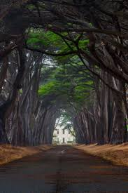 Prettiest Places In The Us The 25 Best Places In California Ideas On Pinterest Beautiful