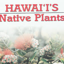 hawaiian native plants hawaii u0027s native plants softcover legacy forest gifts