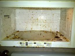 Mold In Bathtub These Surprising Household Items Are Full Of Toxic Mold Here U0027s