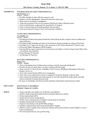 professional examples of resumes security professional resume samples velvet jobs