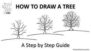 art and design drawing trees by starteducation teaching