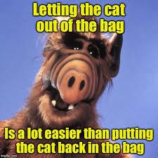 Alf Meme - image tagged in alf imgflip