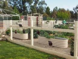 corrugated raised garden beds garden gumtree australia free