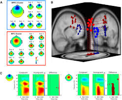 World In Conflict Custom Maps by Two Independent Frontal Midline Theta Oscillations During Conflict