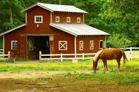 ontario equine farm insurance ontario horse farm insurance henry equestrian insurance brokers ltd