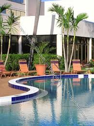 commercial swimming pool planting ideas