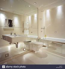 Mirrored Wall Cabinet Bathroom Mirrored Wall In Contemporary Bathroom With Interior Design By