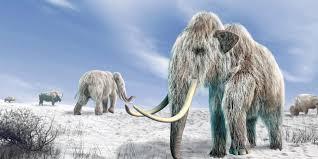 bbc earth decide extinct species resurrect