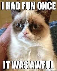Grumpy Cat Meme I Had Fun Once - i had fun once it was awful grumpy cat quickmeme