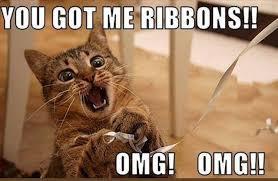 Funniest Cat Memes - 25 funny cat memes sayingimages com