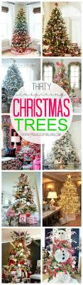best 25 tree lots ideas on real mini