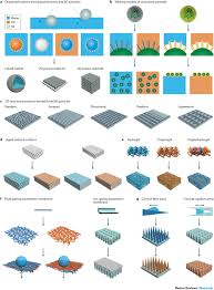 nature inspired superwettability systems nature reviews materials