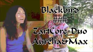 wohnzimmer backnang blackbird zartcore duo aurelia u0026max t m lennon mccartney
