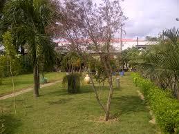 our garden indoor plant nursery revamp omar gardens blog