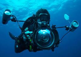 Photography And Videography Padi Digital Underwater Photography And Videography